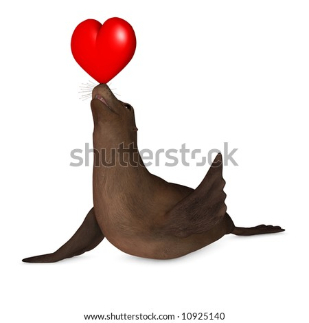 A seal balancing a valentine heart on its nose and waving. Isolated on a white background. - stock photo