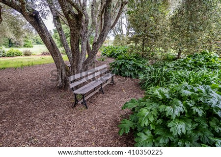 A secluded old English garden style park bench, is surrounded by lush green plants, vegetation, and shaded by a century old tree. Photographed on the California Central Coast, in San Mateo County.  - stock photo