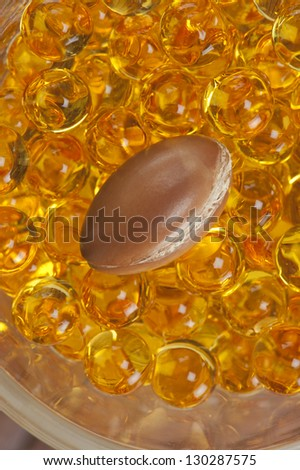a seed of argan with yellow cosmetic pearl,a close-up - stock photo