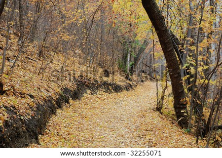 A serene winding hiking trail in late autumn forest, north Saskatchewan river valley, Edmonton, Alberta, Canada - stock photo
