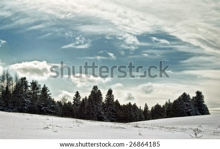 A serie of trees in the background of a field under a cloudy sky - stock photo