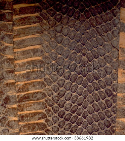 A serpentine skin is texture - stock photo