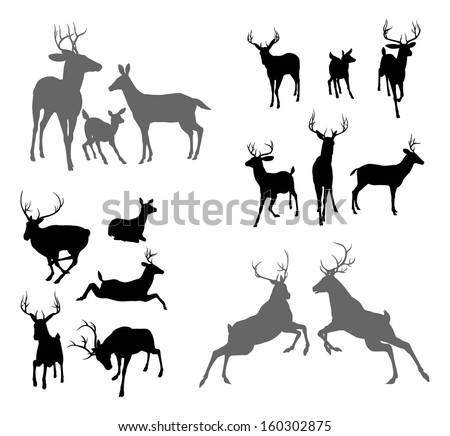 A set of deer silhouettes including fawn, doe bucks and stags in various poses. Also a family group pose and two stags fighting - stock photo