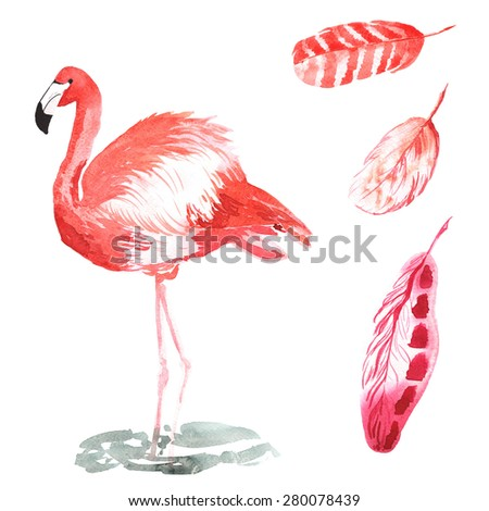 A set of hand-drawn watercolor containing bird Phoenicopterus and feathers - stock photo