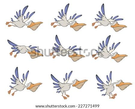 A set of pelicans storyboards  - stock photo