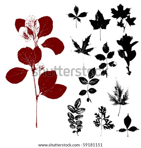 A set of silhouettes of herbs and leaves - stock photo