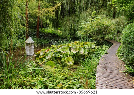 A shaded English woodland garden with boardwalk and pond