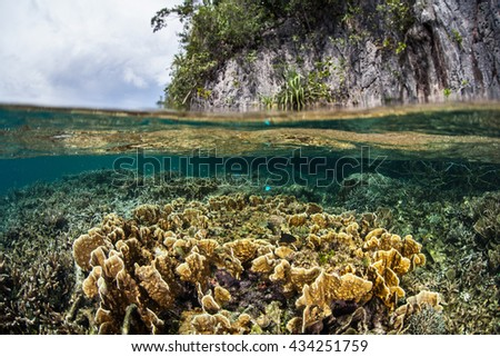 A shallow coral reef grows near limestone islands in Wayag, Raja Ampat, Indonesia. This set of beautiful islands lies just north of the equator and is home to a wide set of tropical marine life. - stock photo