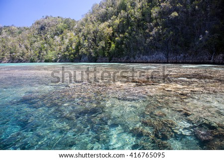 A shallow, fringing reef grows along the edge of a limestone island in Raja Ampat, Indonesia. - stock photo