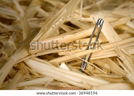 A shiny, metallic needle found in a haystack. - stock photo