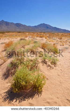 A shot across the spartan desert in the Mojave National Monument in California. - stock photo