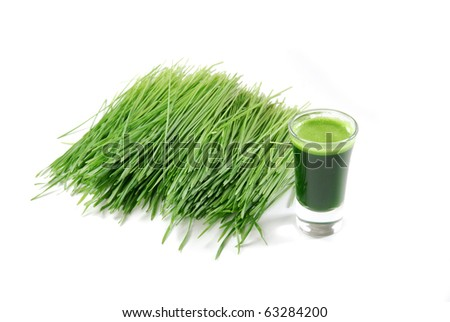 A shot glass of wheatgrass with fresh cut wheat grass - stock photo