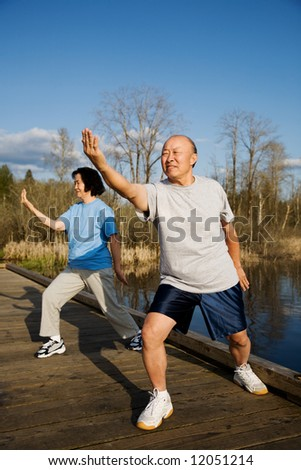 A shot of a senior couple practicing tai-chi exercise - stock photo