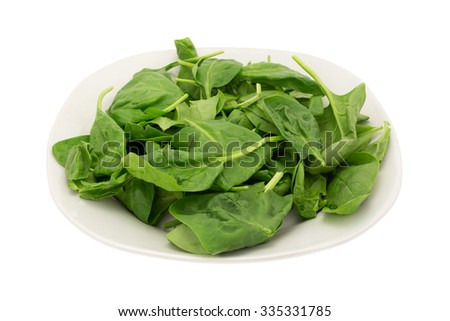 A side view of a group of immature spinach leaves on plate and white background. - stock photo