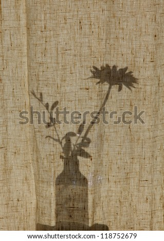 A silhouette of a house plant on a windowsill - stock photo