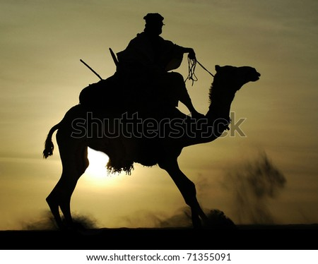 A silhouette of a Tuareg rider and camel rising after mounting in the desert - stock photo