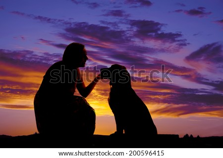 a silhouette of a woman kneeling and talking to her pet dog. - stock photo