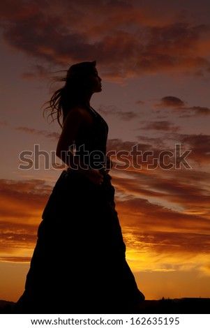 A silhouette of a woman with her hair blowing. - stock photo