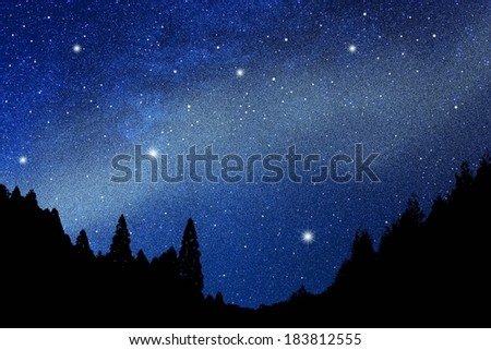 A silhouette of trees against the night sky. - stock photo