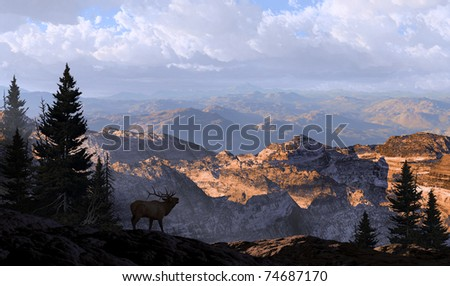 A silhouetted elk looking into the distance mountains in the morning sunlight. - stock photo