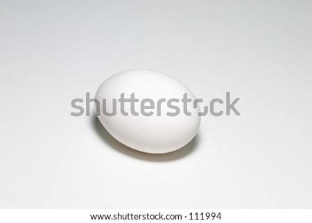 A simple egg. - stock photo