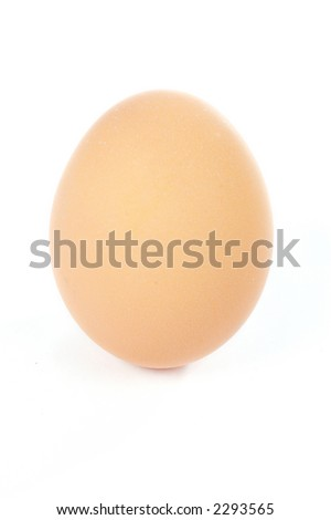 A single egg with shadow on a white background. Focus on the bottom
