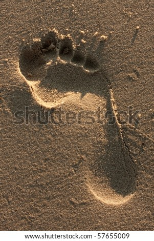 A single foot print imprinted in the sand on the beach. - stock photo