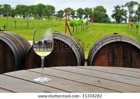 A single glass of white sits on a table in front of a small vineyard - stock photo