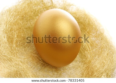 a single golden egg in the nest isolated on a white background - stock photo