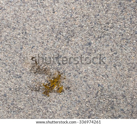 A single half buried cat feces in kitty litter. The litter is the common type, and is composed of powdered clay and fine gray gravel. - stock photo