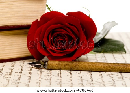 A single red rose lays on top of a hand written document. - stock photo