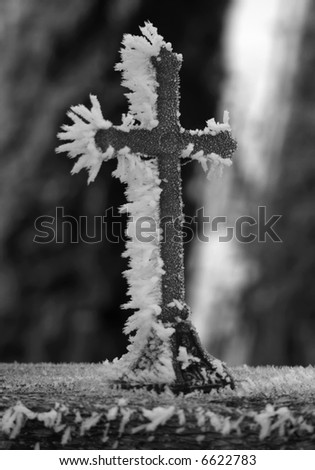 A single tiny frosted cross