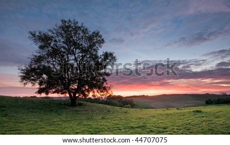 A single tree on a hilltop, with rolling fields and sunset sky in the background. Photo taken in Warwickshire, England. - stock photo