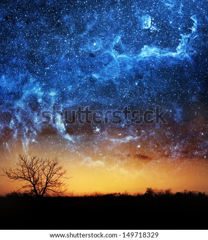 A single tree with beautiful space background - stock photo