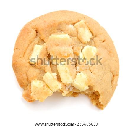 A single white chocolate and macadamia nut cookie.  - stock photo