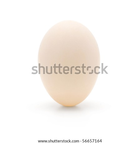 A single white duck egg isolated on a white background