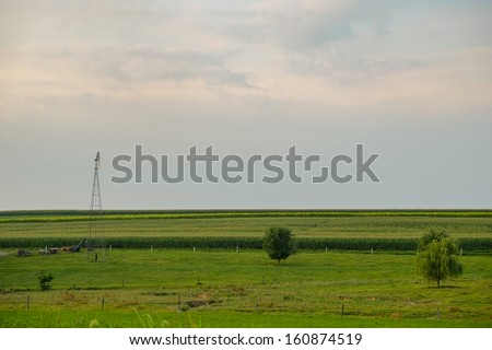 A single windmill looks out over acres and acres of corn and cornfields all in a row on an amish country farm  - stock photo