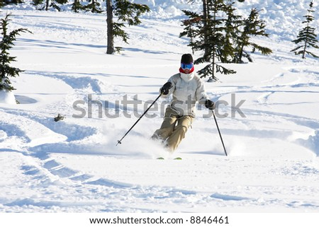 A skiier enjoying fresh snow in Whistler, BC. - stock photo