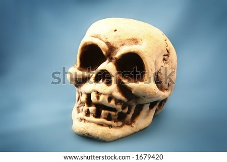 A Skull on a vibrant blue background