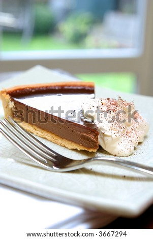 A slice of delicious chocolate tart gateaux served with fresh whipped cream with sprinkling of chocolate dust. - stock photo