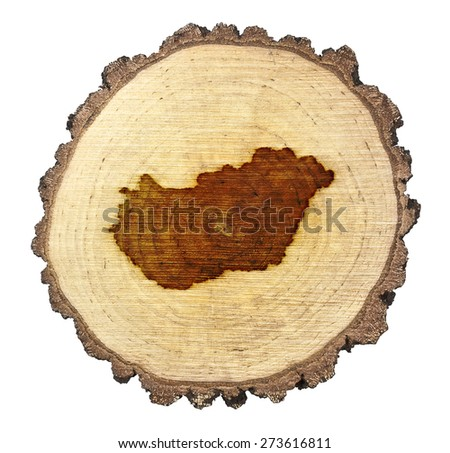 A slice of oak and the shape of Hungary branded onto .(series) - stock photo