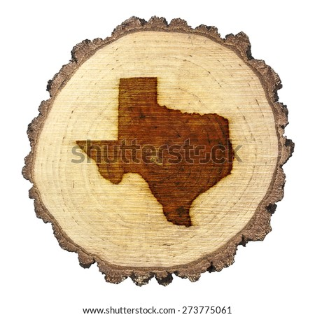 A slice of oak and the shape of Texas branded onto .(series) - stock photo