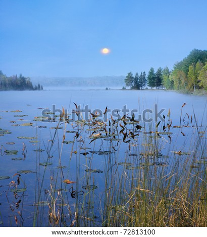 A Slightly Foggy Moonrise Over Lily Pads And Distant Tree Line On A Quiet Michigan Lake At Dusk, USA - stock photo