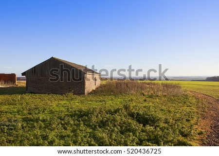 a small barn overlooking a young green wheat crop and the vale of york in a yorkshire wolds landscape under a clear blue sky in autumn