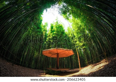 A small bench made out of bamboo among the bamboo forest in Damyang, South Korea - stock photo