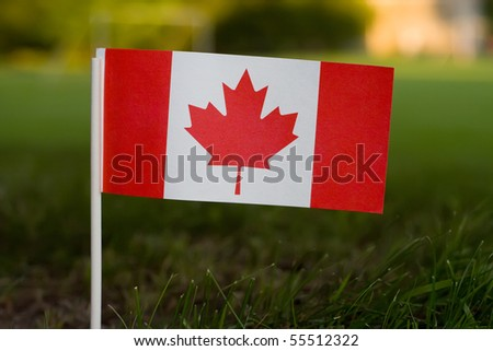 A small Canadian flag set in grass with beautiful sunset colour behind it. - stock photo