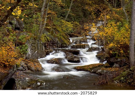A small cascade in the forests of West Virginia. Taken with a slow shutter speed to smooth the water. The stream is framed with the yellow leaves of autumn. - stock photo