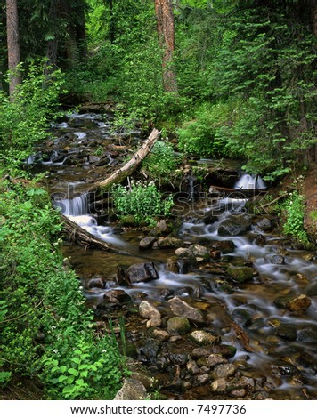 A small creek in the Gunnison National Forest of Colorado. - stock photo