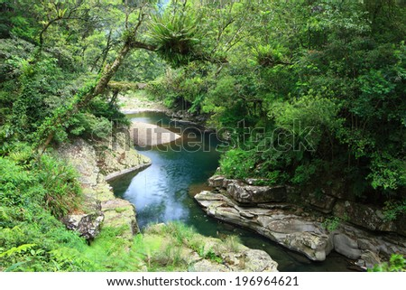 A small creek with rocks runs through a forest with trees on both banks. - stock photo