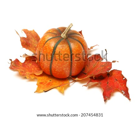 A small fake pumkin rests in the fall leaves. - stock photo
